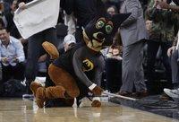 Kojotas Vilis tapo etatiniu šikšnosparnių gaudytoju (Scanpix nuotr.)