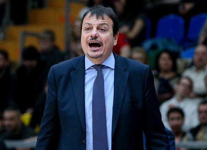 E.Atamanas bandys atgaivinti krepšinį Turine (Scanpix nuotr.)